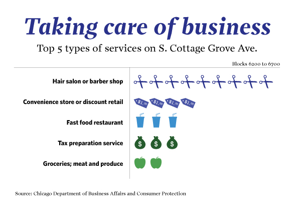 S. Cottage Grove Ave business types