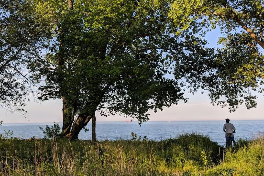 South Shore Nature Sanctuary